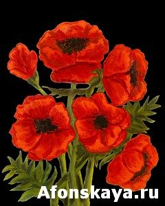 Poppies on black, painting