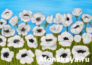 White poppies, painting