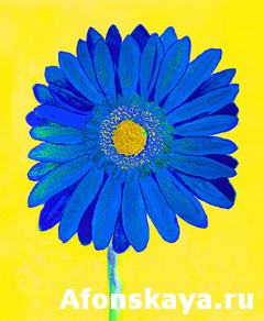 Blue gerbera on yellow, watercolor