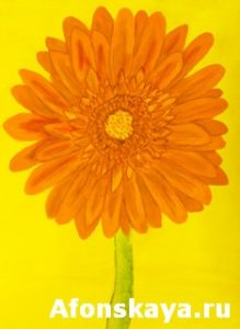 Orange gerbera, painting