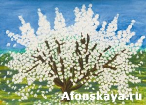 Apple tree in blossom, painting, acrylic on paper