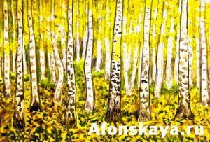 Hand painted picture, yellow birch forest