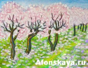 Pink cherry garden in blossom