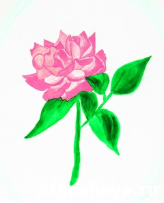 Pink rose, painting