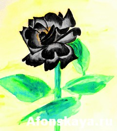 Black rose, painting