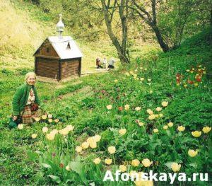 Боровский монастырь святой источник