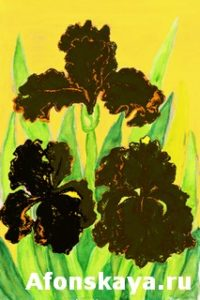 Three black irises, painting