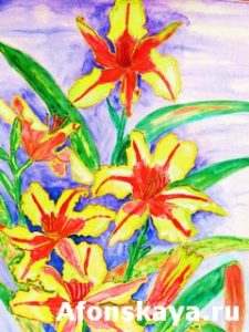 Red-yellow daily lilies