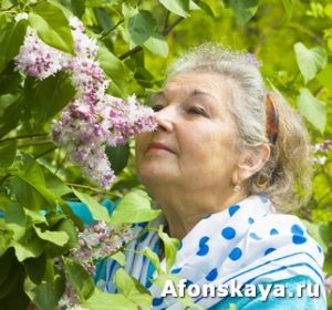 Old lady with lilac