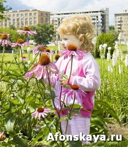 Little girl looking at flowers