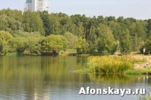 Москва парк Покровское-Глебово