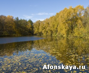 Москва Измайловский парк пруд