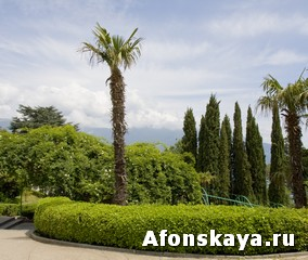 Парк Ливадийского дворца Крым