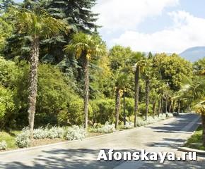 Крым парк Айвазовского