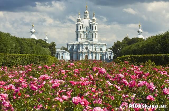 Воскресенский Смольный собор, Санкт-Петербург