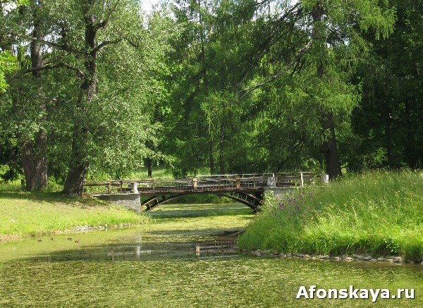 царское село мост парк